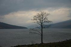 Loch Arkaig, Highlands, Scotland