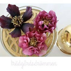 Äng vase - Klong #helleborus
