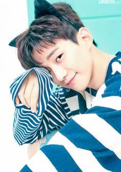 Kitty Junho Credit as tagged Jung Suk, Lee Jong Suk, Taecyeon, Cnblue, Beautiful Voice, Beautiful Men, Lee Junho, Big Bang Top, Gu Family Books
