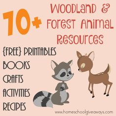 70 FREE Woodland Forest Animals Resources