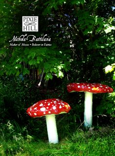 Toadstools of the Giant Variety