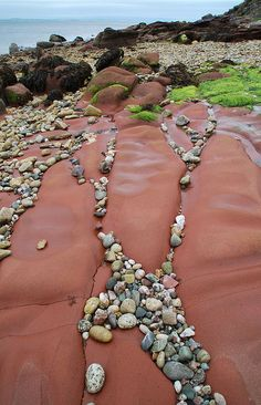 ~ photographer : Niall Corbet ~ Lochranza, Isle of Arran, Scotland  -  sandstone beach