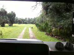 Babcock Wiilderness Punta Gorda Florida