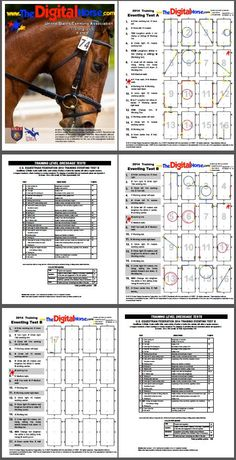 Training Level Tests A and B Dressage Tests for Eventing