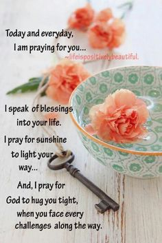 Today & everyday I am praying for you . I speak of blessings into your life. I pray for sunshine to light your way . And, I pray for God to hug you tight, when you face every challenges along the way. Good Morning Prayer, Morning Blessings, Good Morning Messages, Morning Prayers, Good Morning Wishes, Morning Images, Morning Scripture, Gd Morning, Morning Board
