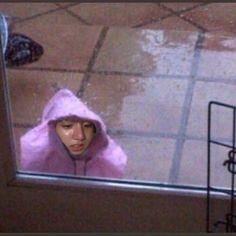 22 ideas memes bts face jungkook for 2019 Bts Jungkook, Namjoon, Taehyung, Bts Meme Faces, Funny Faces, K Pop, Wattpad, Bts Face, Pokerface