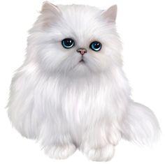 kitten cat clipart cute persian cartoon adorable animals yopriceville