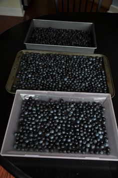 How to Freeze Blueberries.  I can't wait till blueberry picking season!