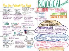 Biology Knights: YOUR Interactive Notes