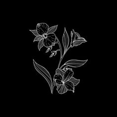 Flower VIII
