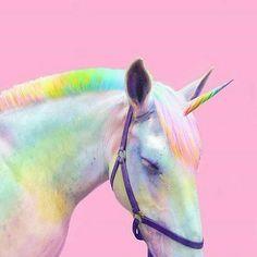 "27 Likes, 2 Comments - Rana~Zehra~Ceren👑 (@tumblr_the_pikachu) on Instagram: ""#unicorn#tumblr#unlover#shopmarketing#makeup#insta#beatiful#likeforlike#polishgirl#amazing#bebold#polond#inspired#vape#likeforfollow#vaporizer#getcreative…"""