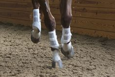 An… http://www.proequinegrooms.com/index.php/tips/health-and-well-being/an-introduction-to-inflammation-and-icing-and-how-it-affects-you/
