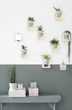 DIY plantenhouder / green wall Tanja van Hoogdalem