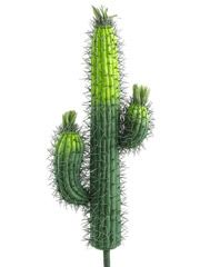 Artificial Saguaro Cactus - 23 inch Tall Cactus Single Cactus This cactus reminds you of the old west. It is a smaller version of the classic saguaro Artificial Cactus, Artificial Plants And Trees, Artificial Plant Wall, Artificial Turf, Artificial Flowers, Tall Cactus, Cactus Flower, Cactus Plants, Nice Flower