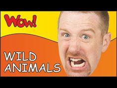 This funny esl video story for children introduces and drills wild animals. Steve and Maggie are on Safari. Steve takes pictures of different animals like ti. Learn English Kid, English Stories For Kids, Learn English Speaking, Short Stories For Kids, Teaching English, English Teachers, Safari, Presents For Kids, Teaching Materials