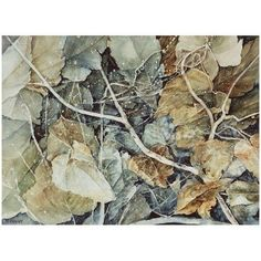 "Roxanna Bergner ""Forest Floor"" Giclee Print (160 CAD) ❤ liked on Polyvore featuring home, home decor, wall art, leaf painting, water color painting, autumn paintings, fall leaves painting and giclee wall art"