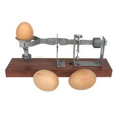 hg_02014_a_egg-scale1.jpg (1000×1000)