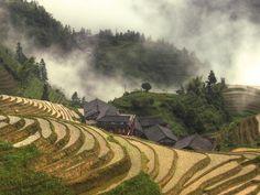 LongjiTerrace, China