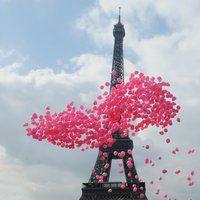 Browse Paris photos and videos.