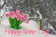 Happy Name Day, Happy Names, Happy Birthday, Board, Quotes, Christmas, Diy, Happy Brithday, Quotations