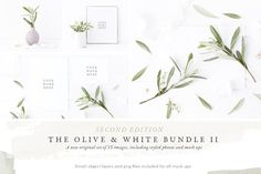 NEW Olive & White Mock up Bundle II by White Hart Design Co. on @creativemarket
