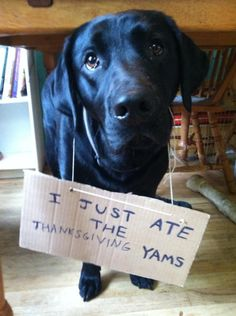 No one really likes yams anyway. - previous pinners' comment? FULL OF WIN!