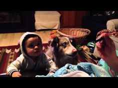 Sibling rivalry: Family dog learns to say 'mama' before baby! ♥
