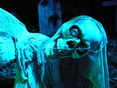 The HAUNTED FOREST opens Friday, September 23rd! Corn Maze!#BufordCornMaze http://www.discoverlakelanier.com/home/new-events/
