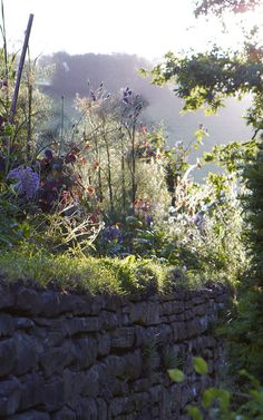 arne maynard ~ dawn at allt-y-bela - Early morning Image Nature, All Nature, Abstract Landscape, Landscape Paintings, Acrylic Paintings, Landscape Edging Stone, The Secret Garden, Landscape Photography Tips, Nature Photography