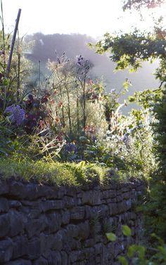 garden designer Arne Maynard's Wales home