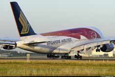 Airbus A380-841 - Singapore Airlines | Aviation Photo #3986499 | Airliners.net