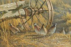 Wildlife art by Jim Hautman Wildlife Paintings, Wildlife Art, Bird Paintings, Wild Creatures, Woodland Creatures, Hunting Art, Cowboy Art, Game Birds, Bird Pictures