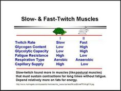 Fuel, develop, and train your slow-twitch muscle fibers through training and cross-training! Use nutrient-timing techniques, and exercise and workout variations that have no limit! Period!