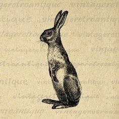 Printable Rabbit Digital Image Digital by VintageRetroAntique