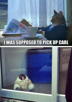 poor monkey :(