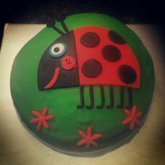 Gaston the Ladybird cake.... #cakesbydan #benandholly