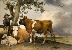 POTTER, Paulus, Taureau, 1647, huile sur toile, 339 x 235.5 cm, Royal Picture Gallery #Mauritshuis, La Haye, Pays-bas