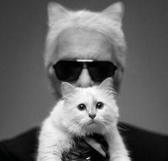 Karl Lagerfeld a posé avec Choupette, son chat, pour le dernier numéro de Harper's Bazaar