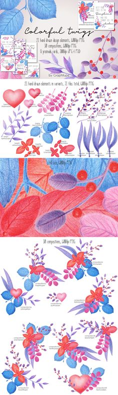 Colorful Twigs - Hand-drawn Illustration Kit by Graphilupe
