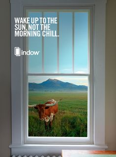 Indow Window Inserts Are Interior Storm Windows That Press Inside Window  Frames. Window Insulation U0026 Noise Reduction At Lower Cost Than Replacement  Windows.