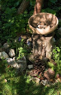Woodland Altar. The simplest gesture can strengthen your connection with the bio-organism that is our Earth.