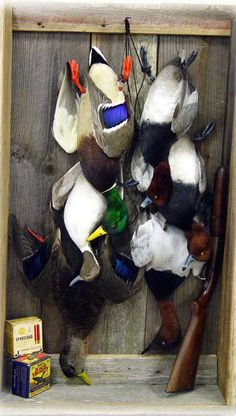 ideas on how to mount my ducks? - Georgia Outdoor News Forum