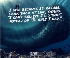 Why do you dive?