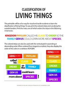Remembering the Classification of Living Things  **Week 1 Science**