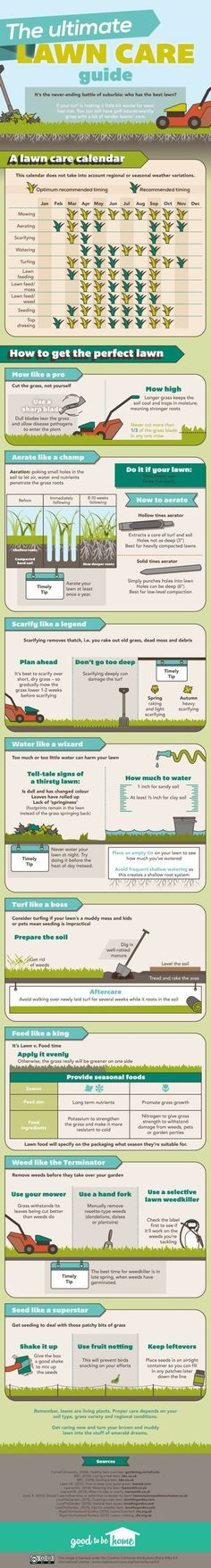 This Graphic Offers Tips and a Full Calendar to Keep Your Lawn Green