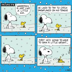 Snoopy and Woodstock play in the snow.