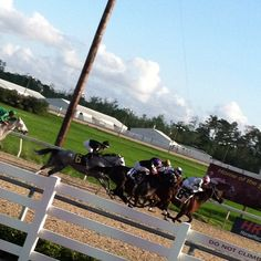 Foreign Exchange, Horse Racing, Horses, Horse