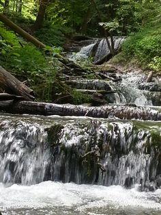 Weavers Creek Harrison park