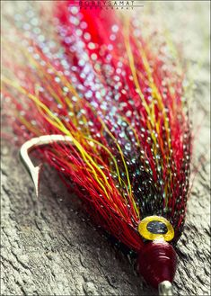 Red fishing fly