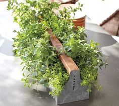 perfect way to grow herbs on the porch at the beach cottage ( pottery barn)